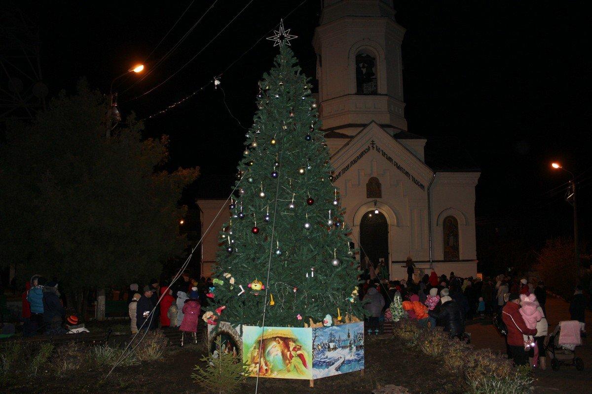 В Спасо - Преображенском соборе открыли новогоднюю елку