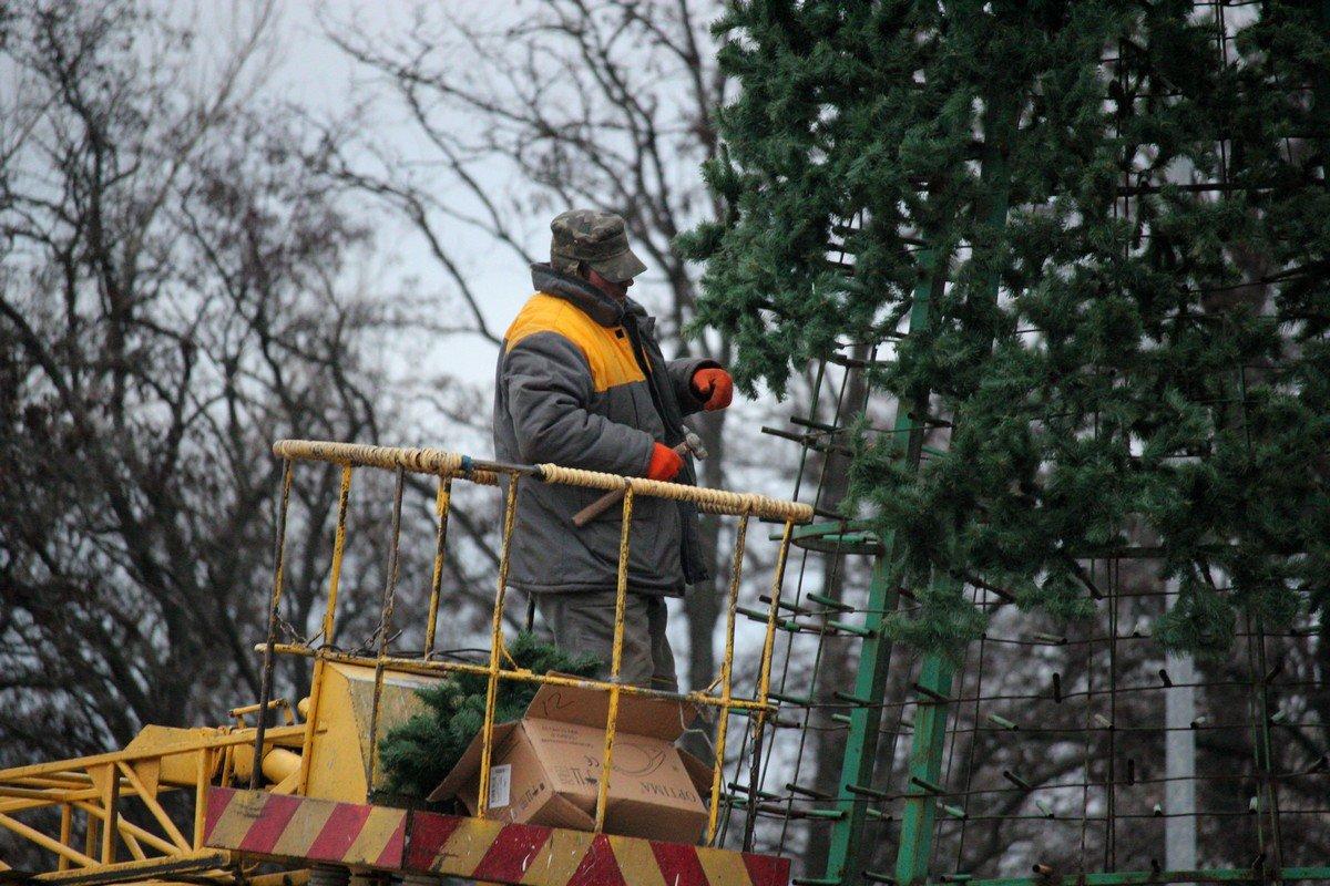 Завтра, елку украсят игрушками и гирляндами