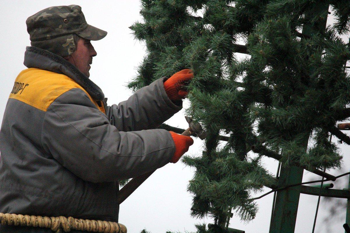 Официальное открытии елки 23 декабря