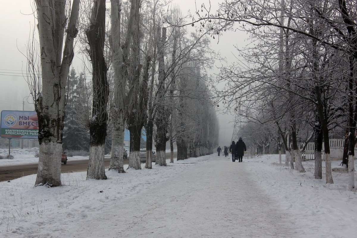 Туман опустился на улицы города