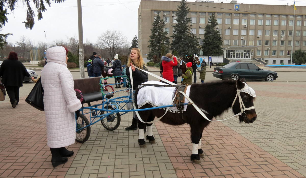 Прогулки на пони и лошадях на Европейской площади