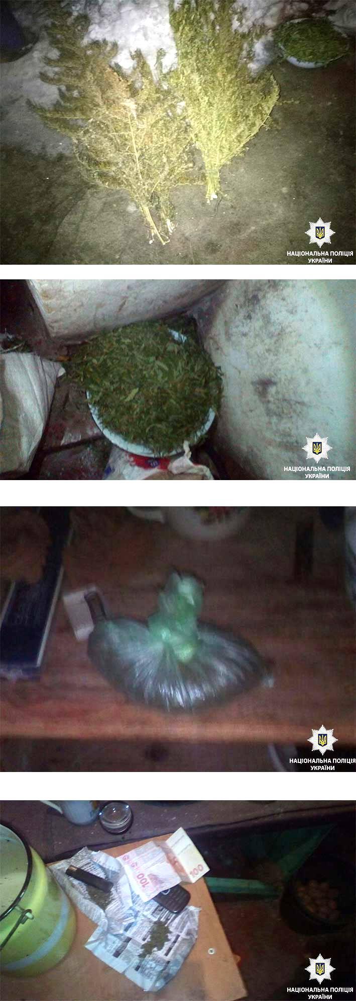 У жителя Никополя изъяли 5 килограмм марихуаны