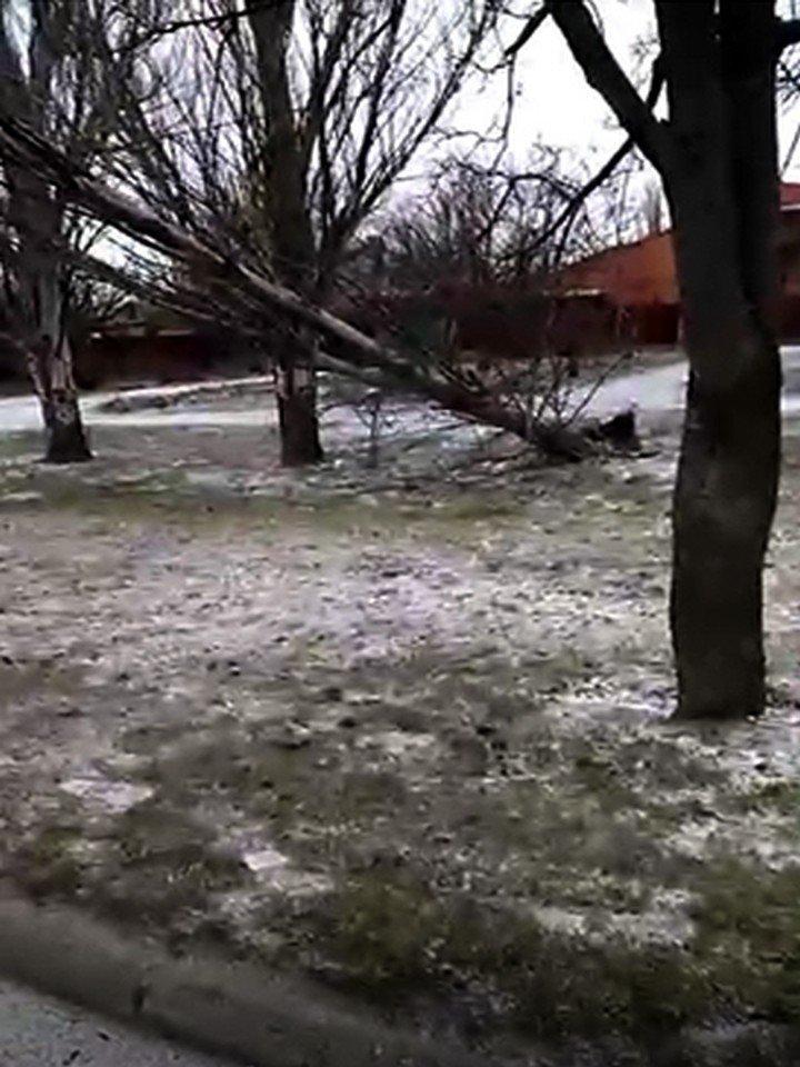 На провода упало дерево на Херсонской