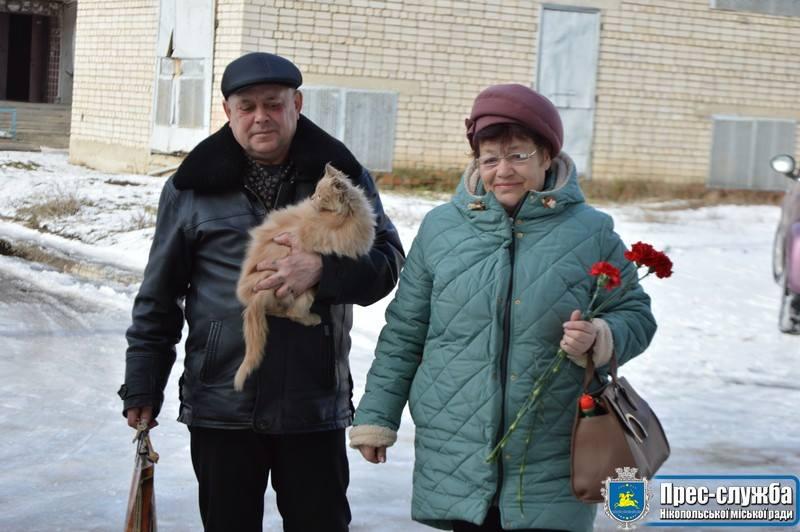 Кот - новый член семьи Жабко