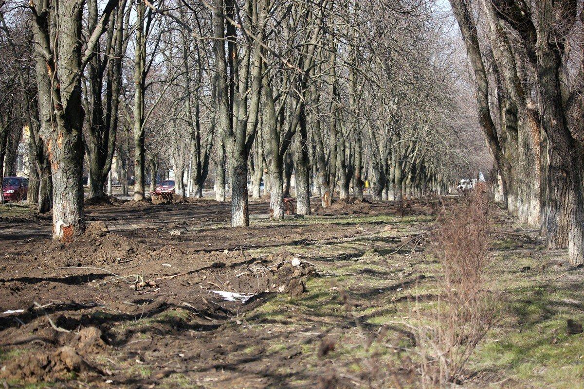 После демонтажа труб теплосети землю не утрамбовали