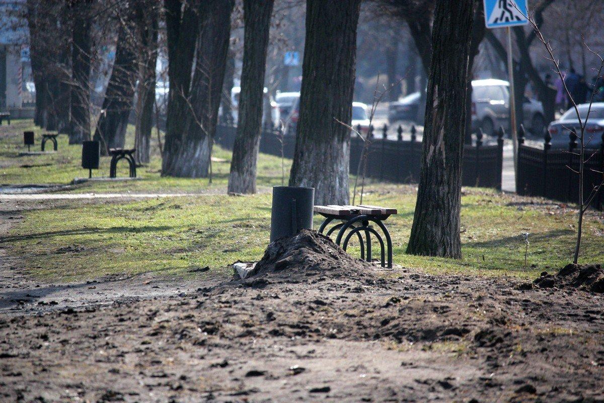 На аллее появится новый водопровод и автоматический полив деревьев