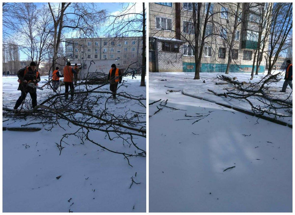 Коммунальщики убирают упавшие деревья