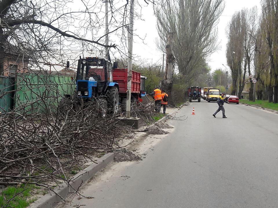 В Никополе расчищают трассы линий электропередачот ветвей деревьев на улицах города