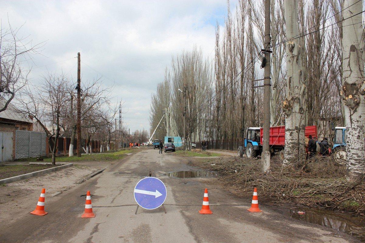 Тополя обновляютна улице Дружбы