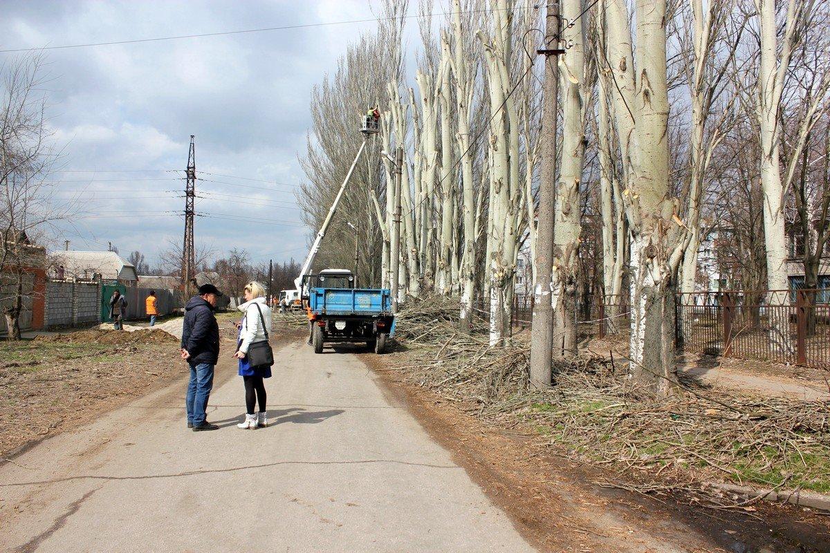 Деревья к весненачали готовить с конца марта