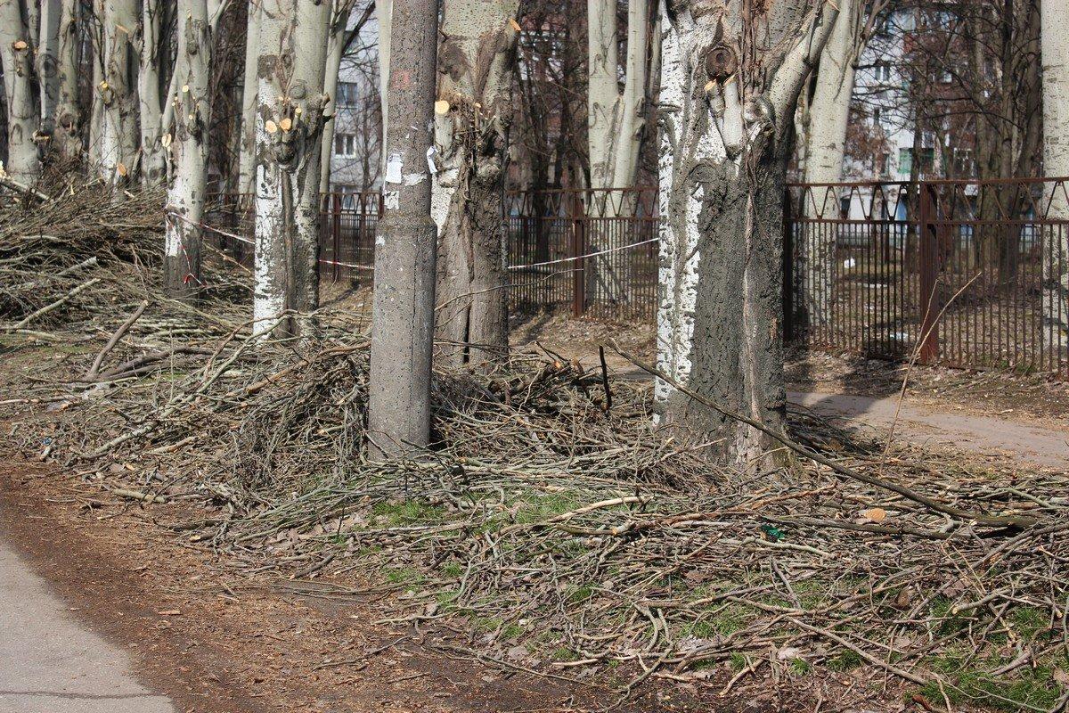 Обрезанные ветки падают на землю, после их измельчает машина