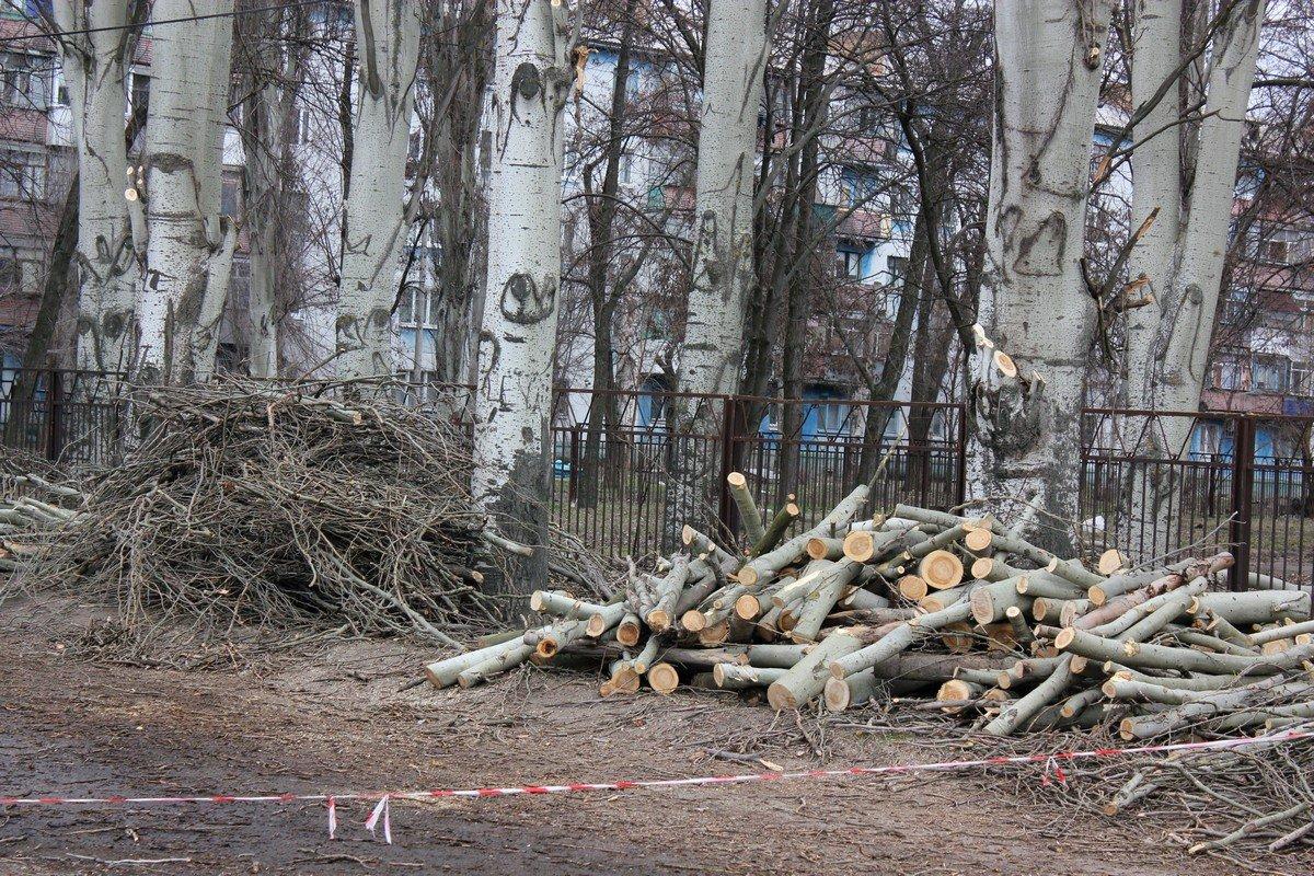Сухие и старые ветви подлежат переработке