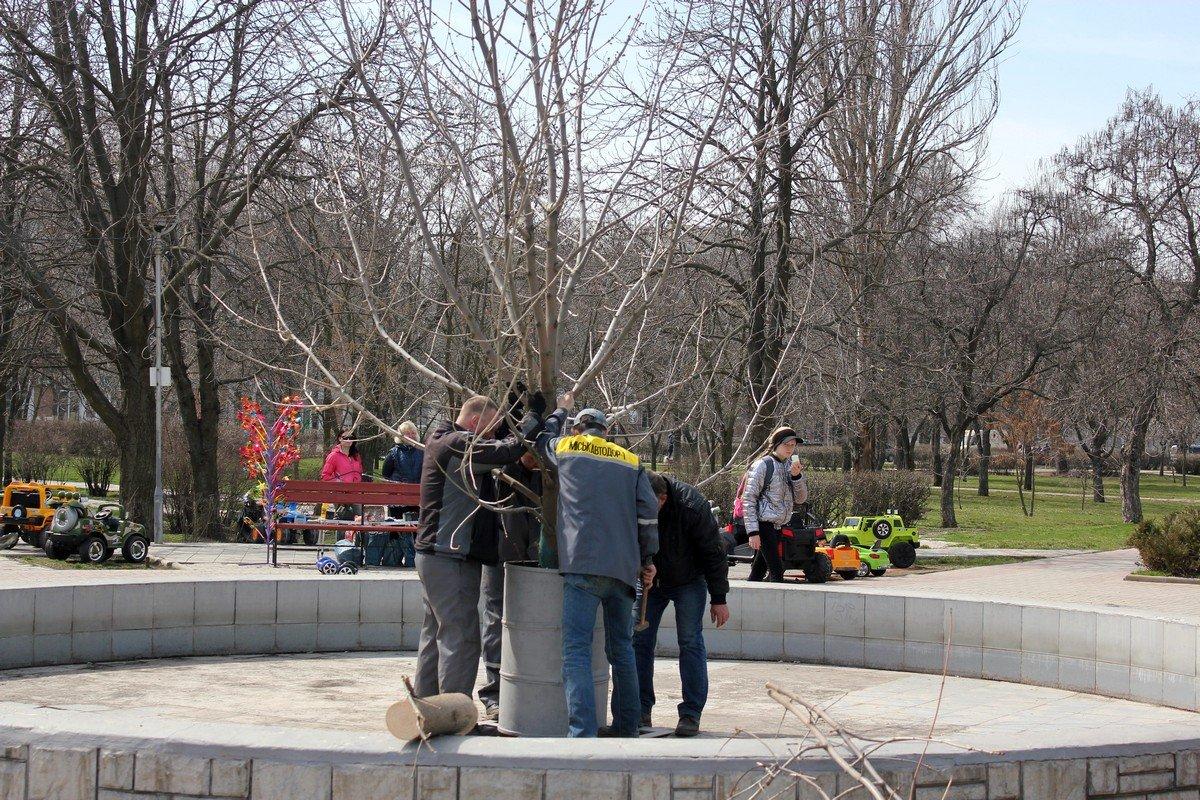 Праздничное дерево украсят пысанками, которые изготовят дети