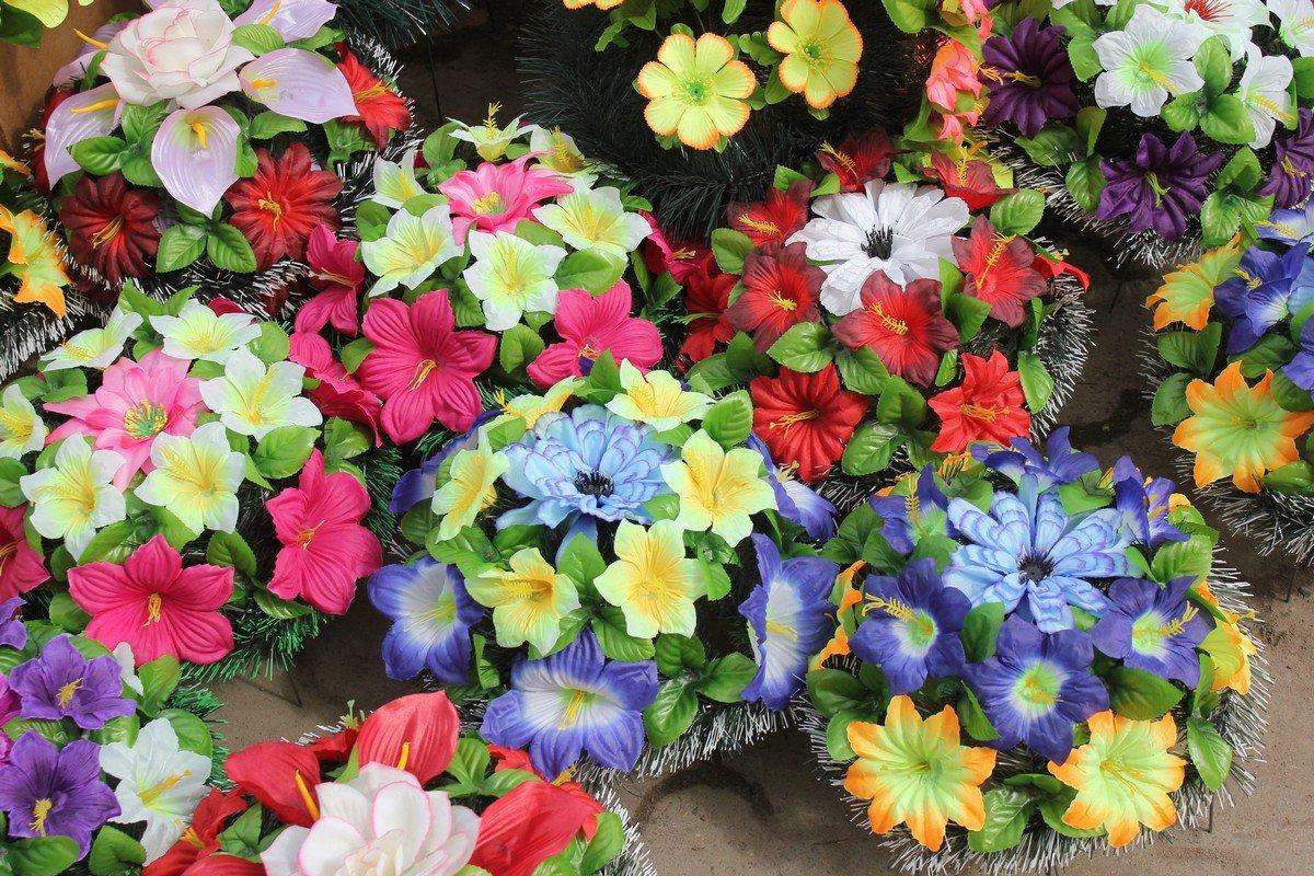 Разнообразие цвета и форм