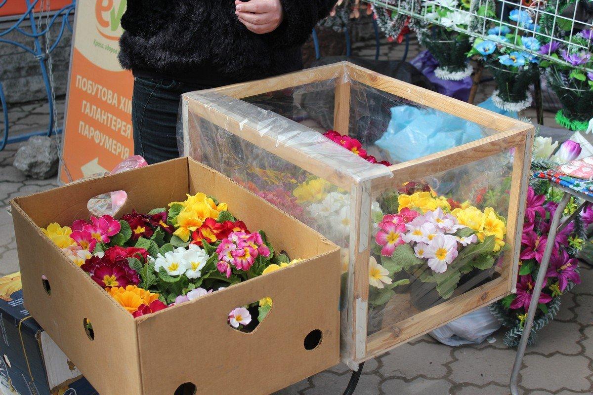 Живые цветы можно купить за 20 гривен