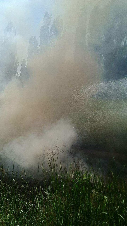 30 мая, вблизи улицы Чалого, 1 горела сухая трава