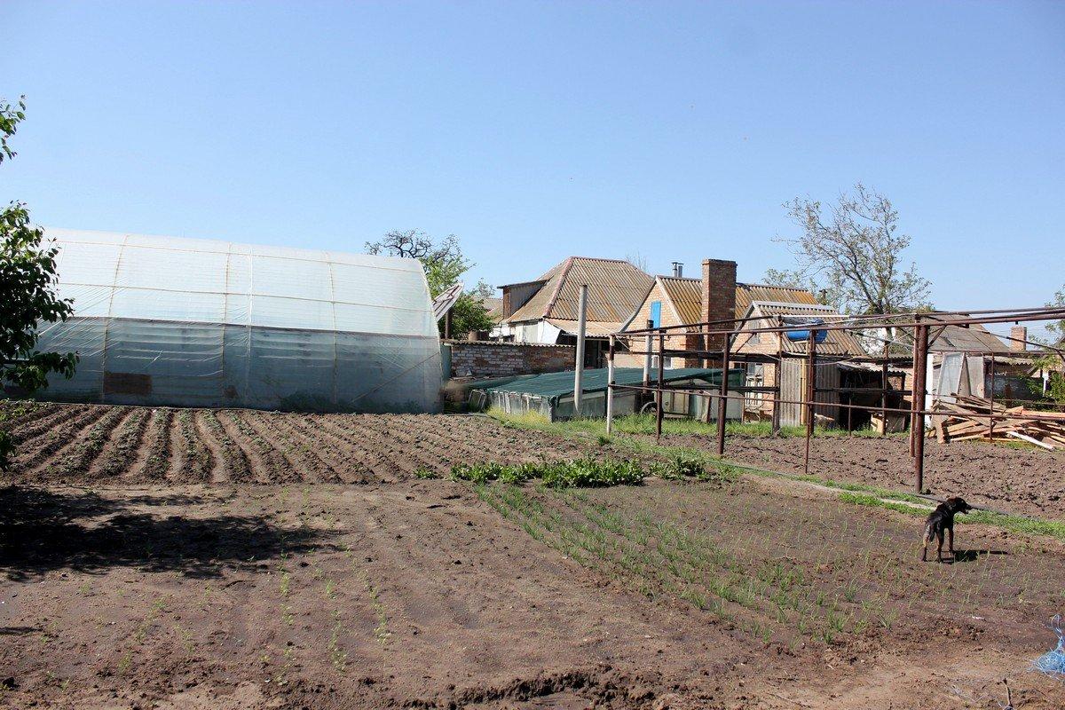 Выжить многодетной семье помогает земледелие