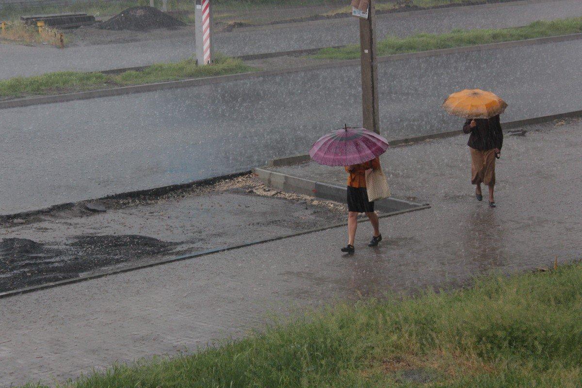 Пешеходы бегут прячась под зонтами
