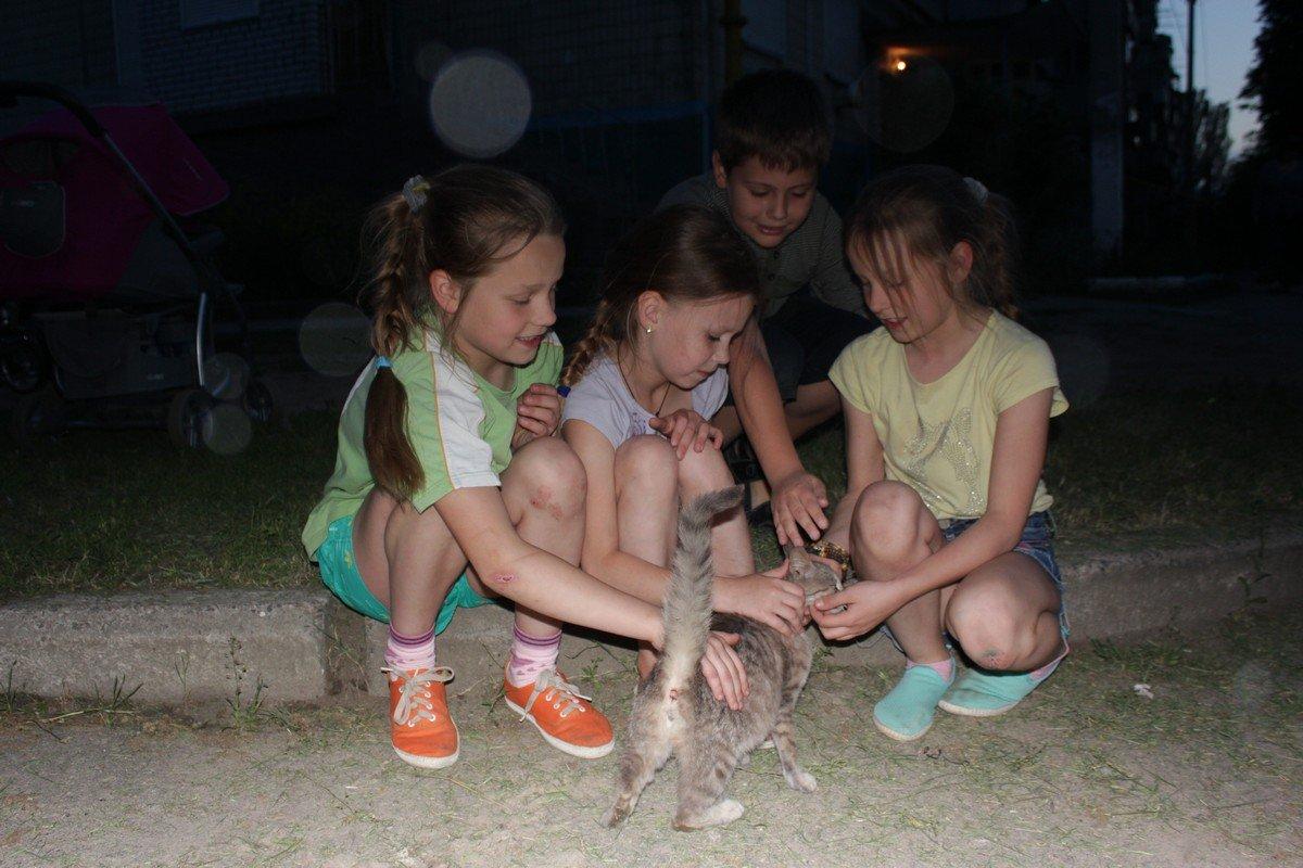 Кошка выбралась из заточения и мурлыкая поблагодарила детей
