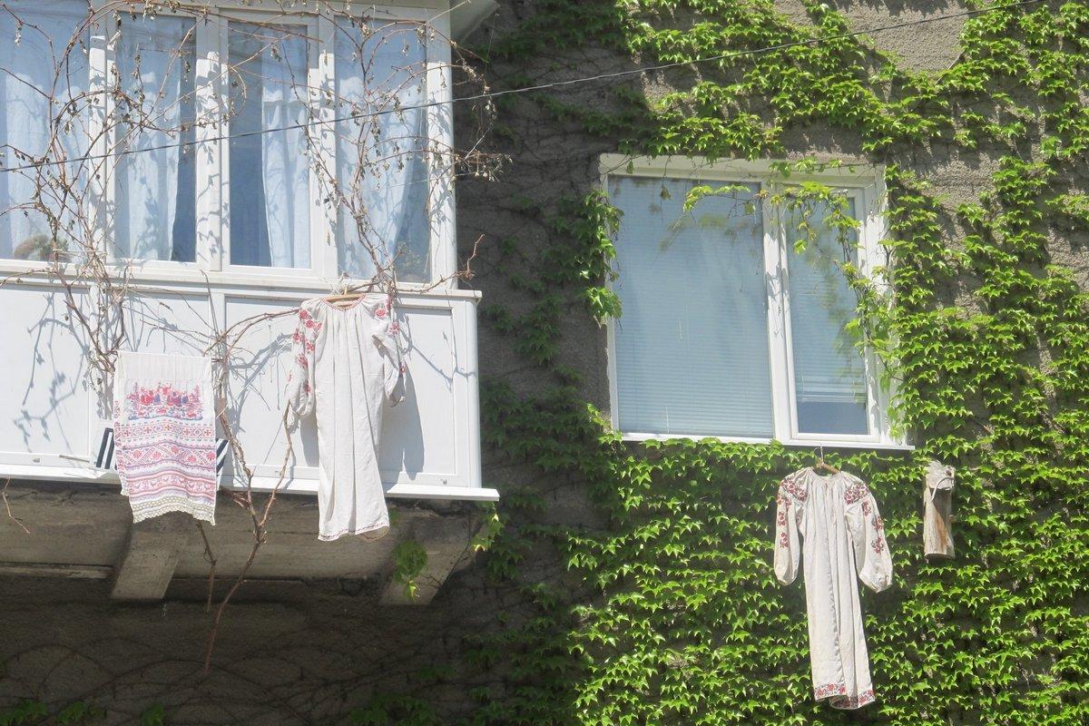 Так отмечают праздник вышиванки жильцы дома 41 по проспекту Трубников