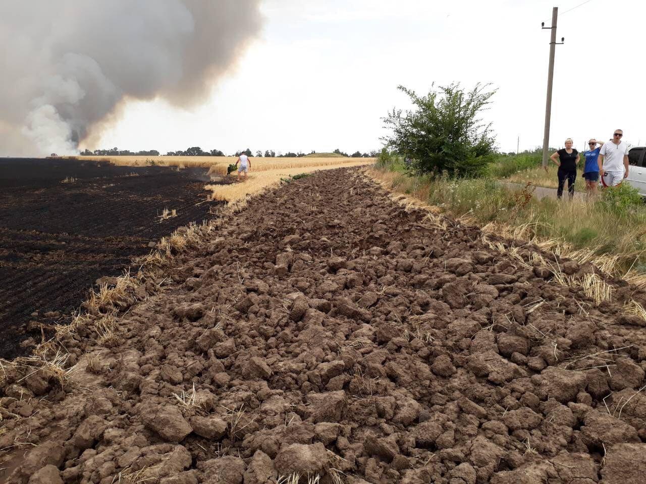 Огонь уничтожилпосевы пшеницы на площади 2,3 гектара