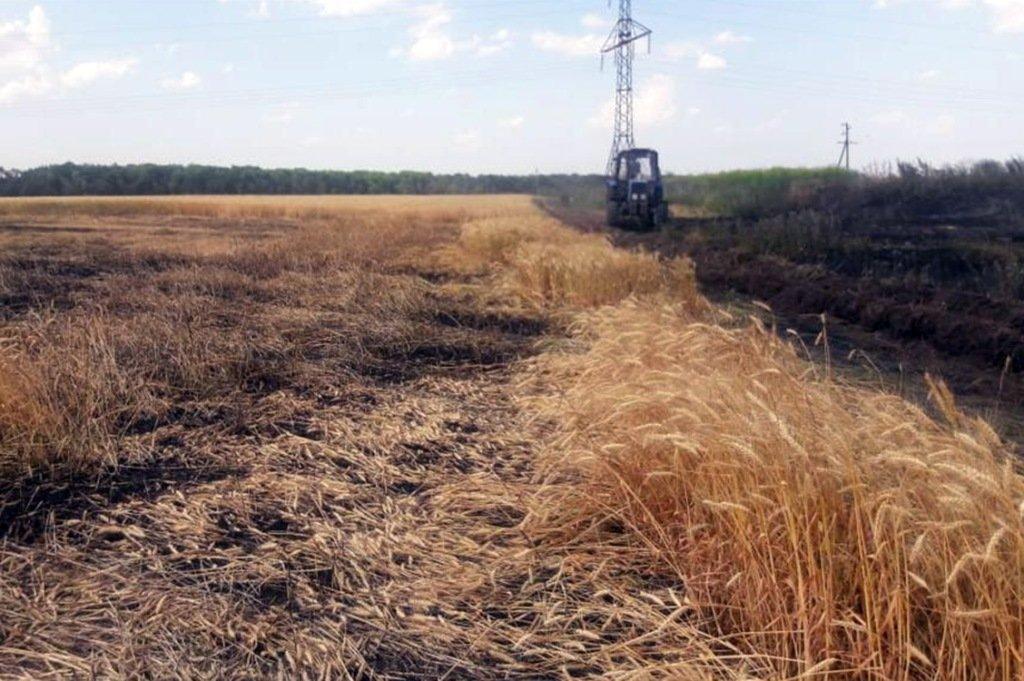 Под Покровом загорелось поле с озимой пшеницей