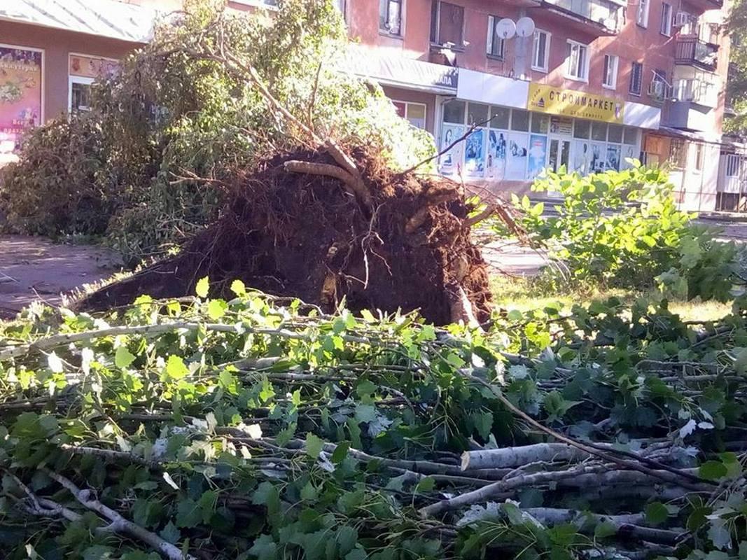 В Никополе порывы ветра вырвали с корнем деревья