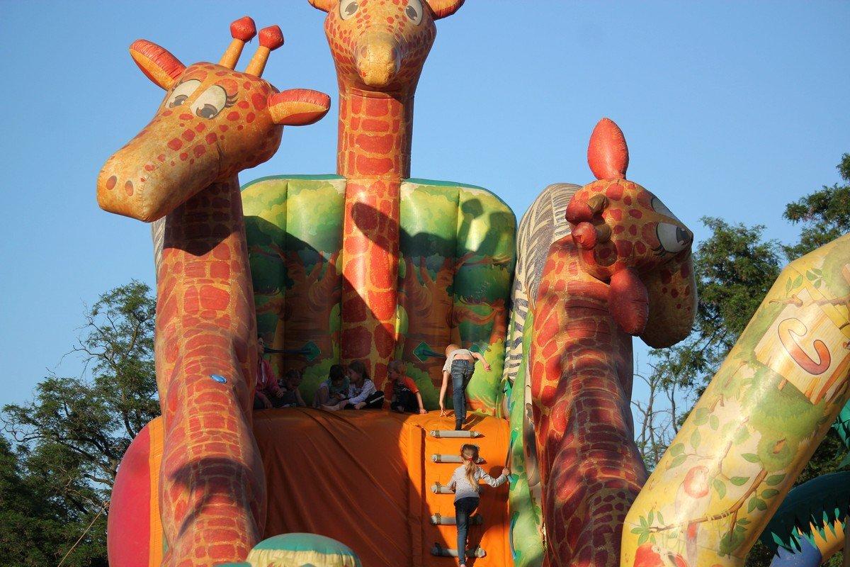 Большие жирафы