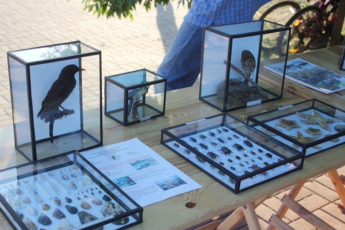 Выставка экоцентра