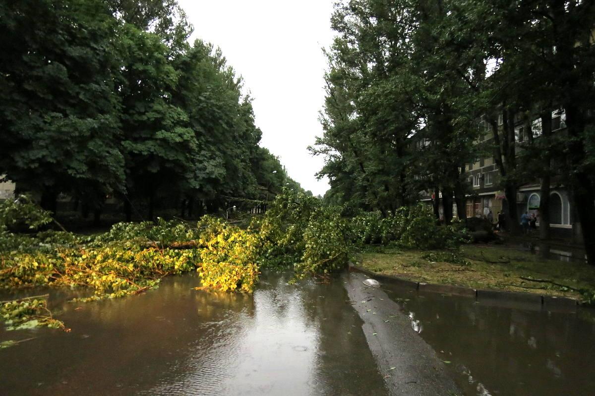 В Никополе массово упали деревья