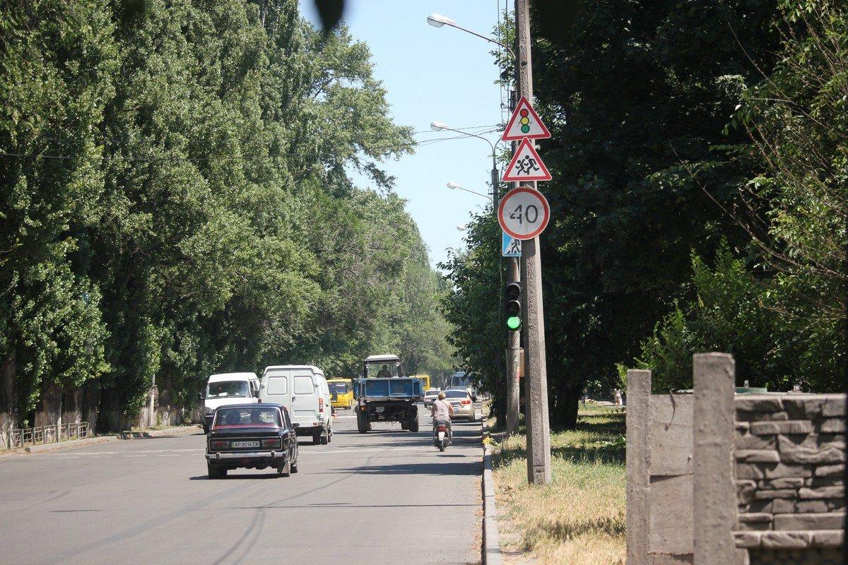 Деревья не закрывают дорожные знаки