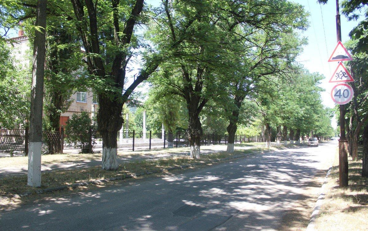 """26 школа ограничивает движение транспорта """"лежачими полицейскими"""""""