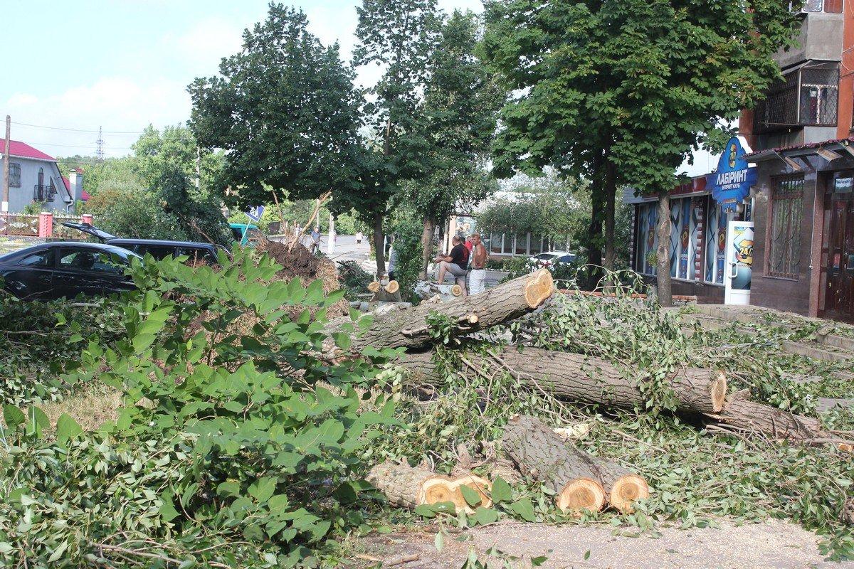 Жители убирают деревья самостоятельно