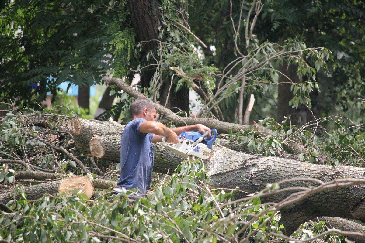 Распиливание поврежденных деревьев