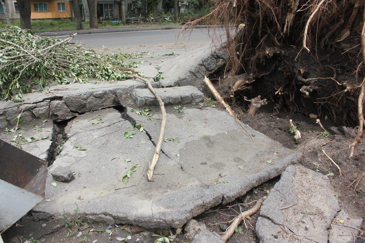 Разрушения от падения деревьев