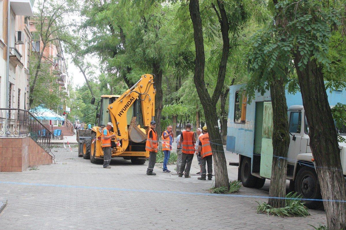 Город очищают от поваленных деревьев
