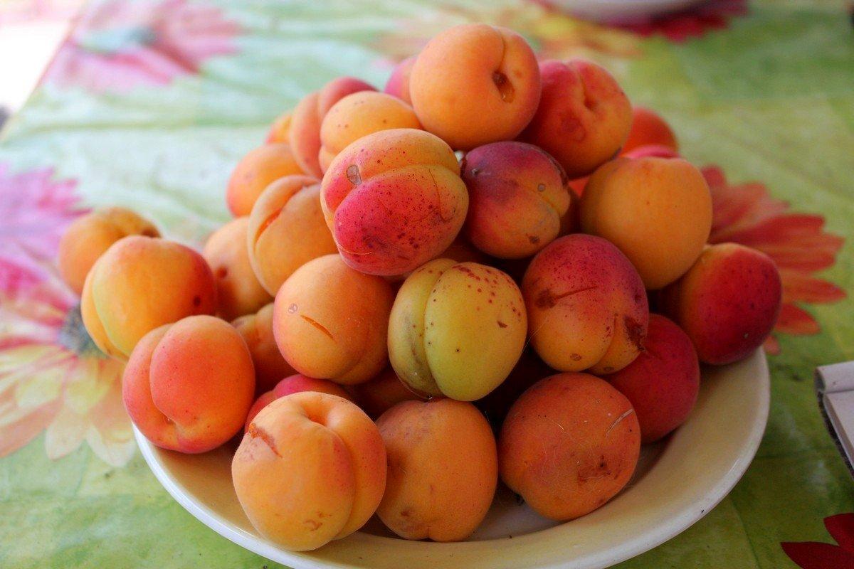В Никополе начинается абрикосопад