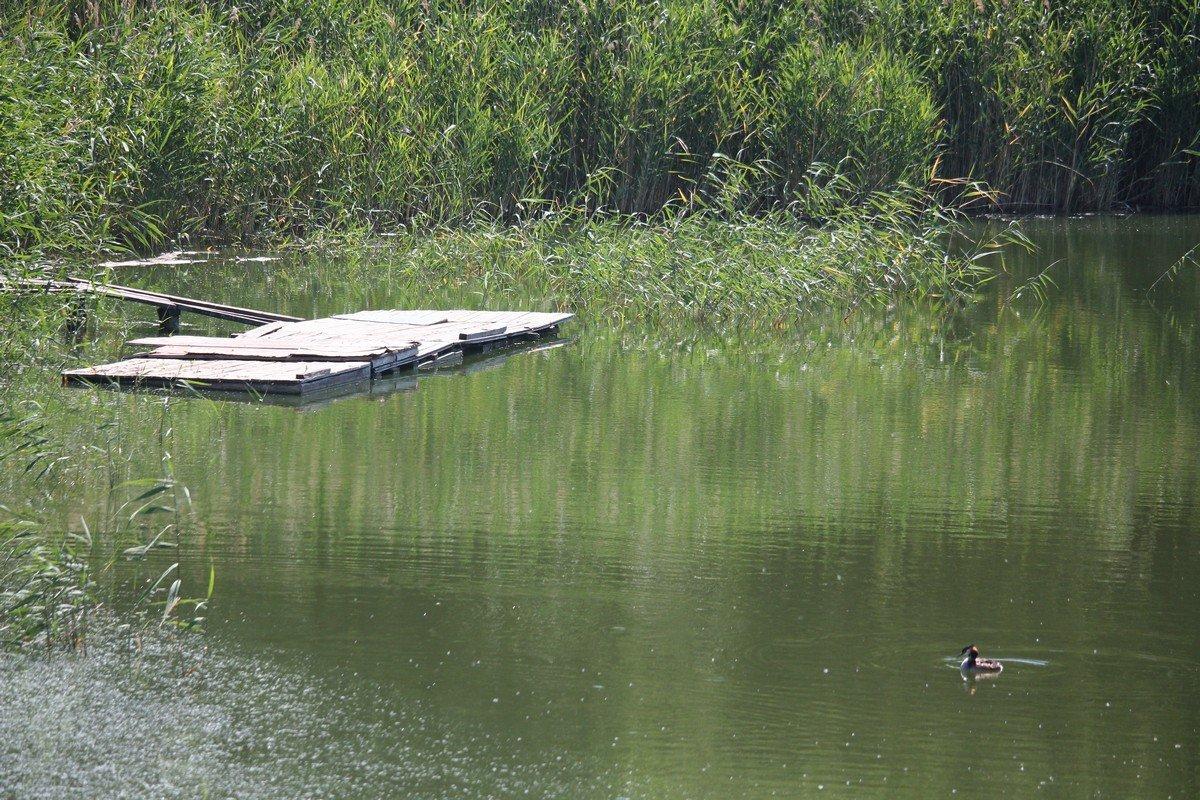 В Никополе много хороших мест, где можно отдохнуть у воды с удочкой