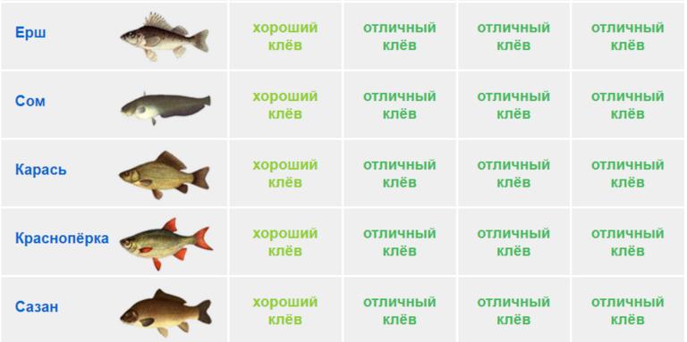 Прогноз клева рыбы крым белогорск