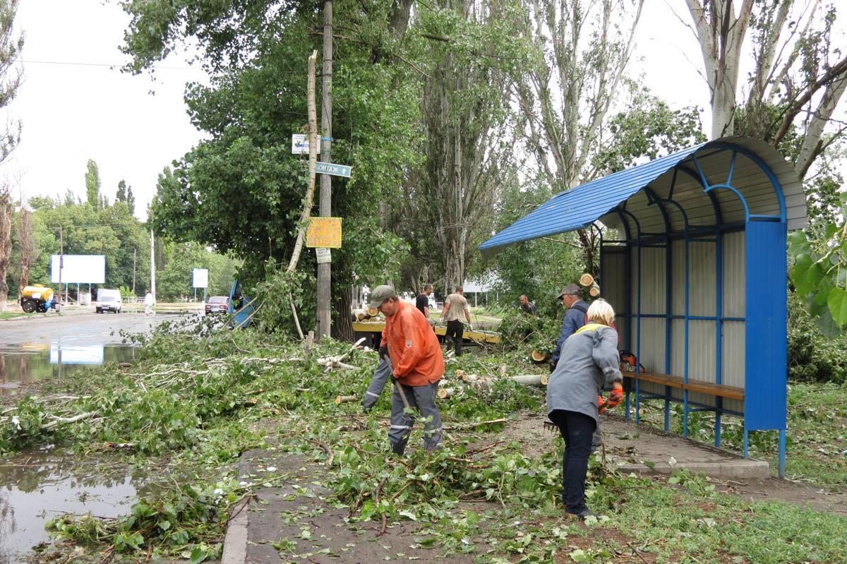 Среди упавших деревьев остановку не было видно