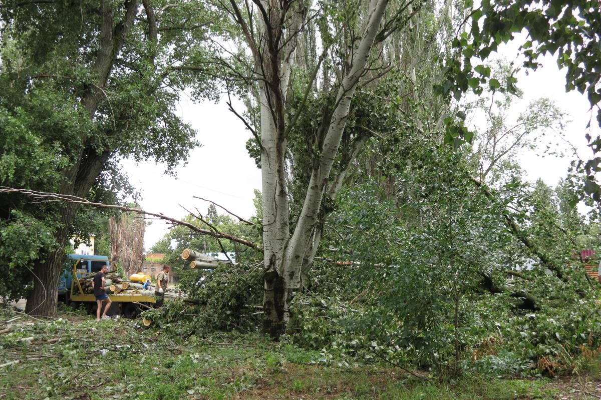 Упавшие деревья распиливают и вывозят