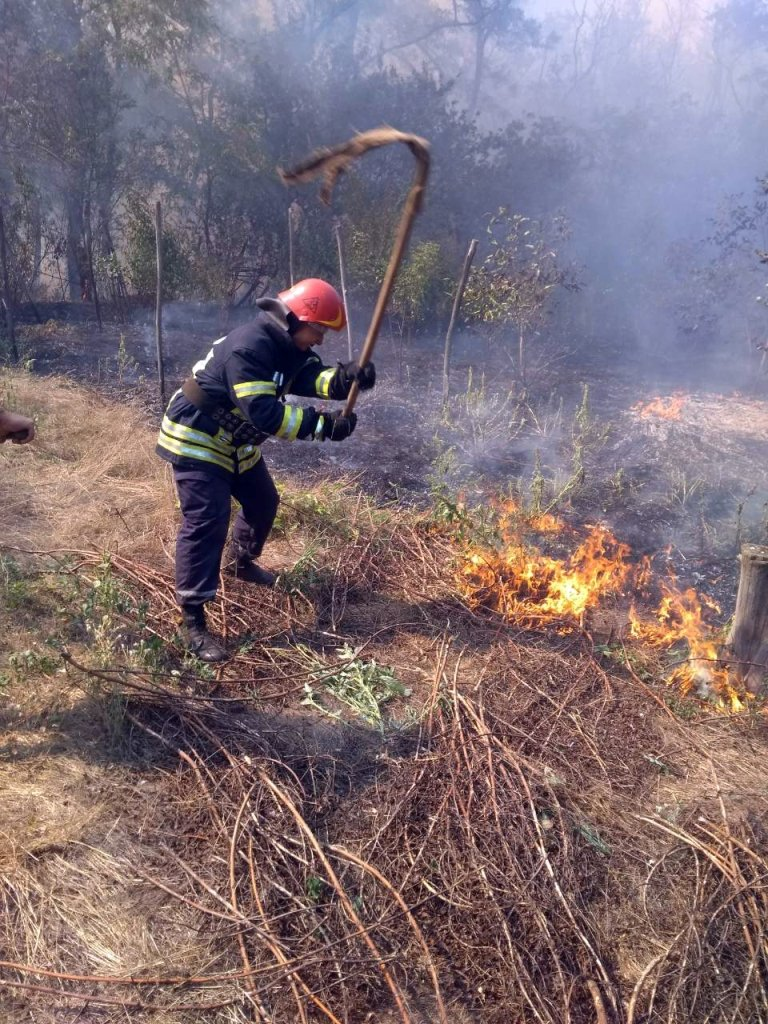 Пожар на территории урочища «Максимовская» Марганецкого лесничества