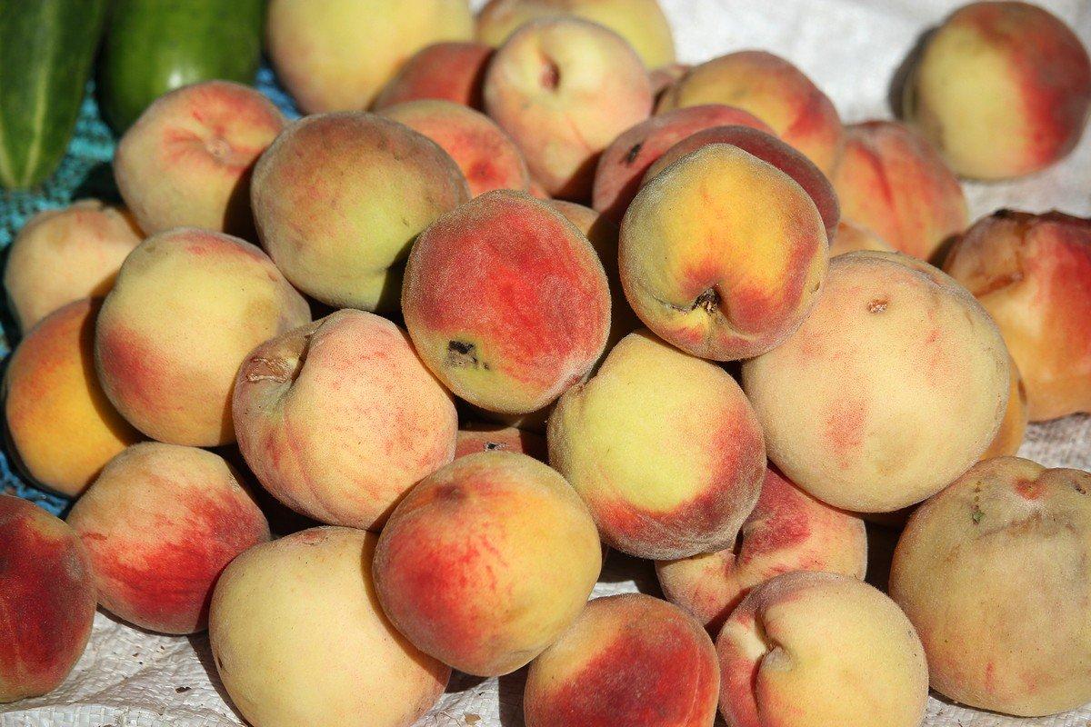 Домашний персик