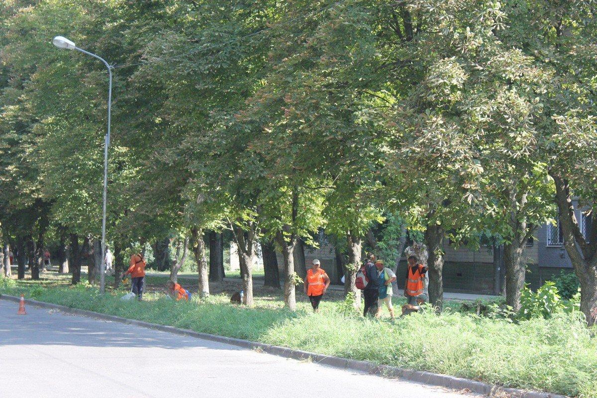 Коммунальщики убирают траву на улице Шевченко
