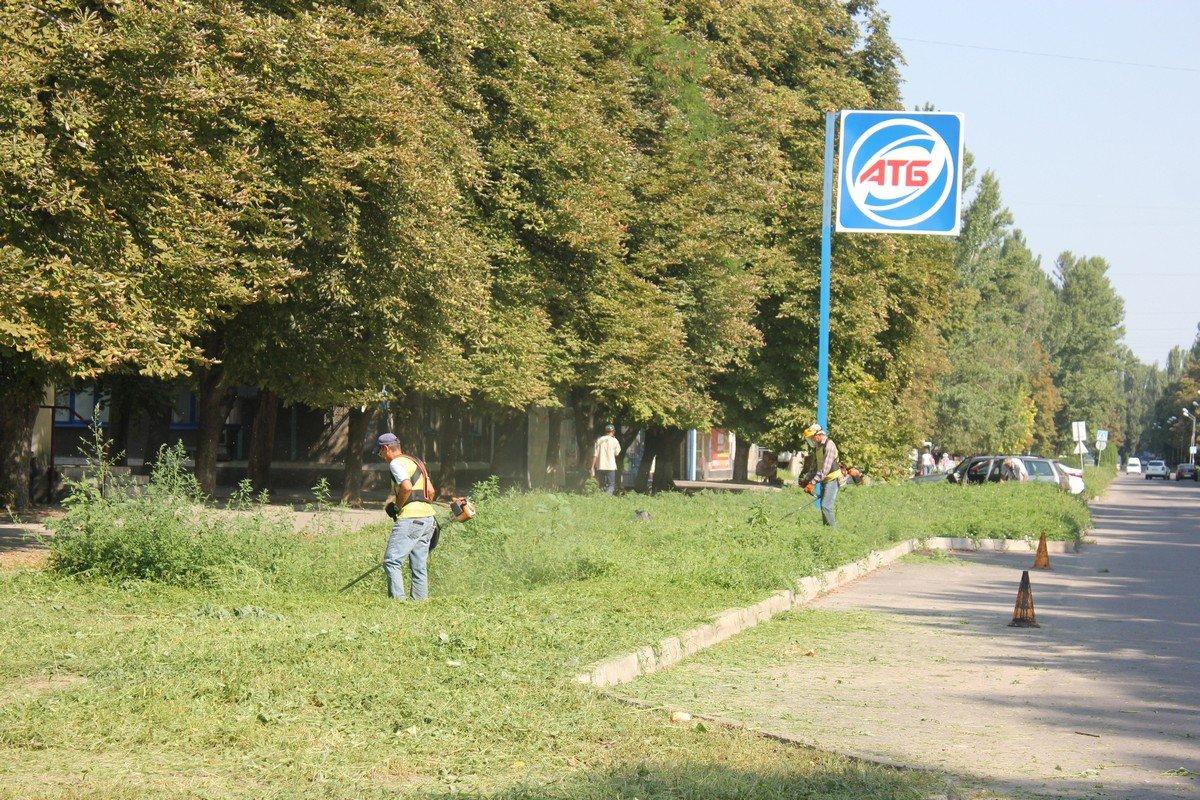 6 августа сорняки убирают в нескольких районах города