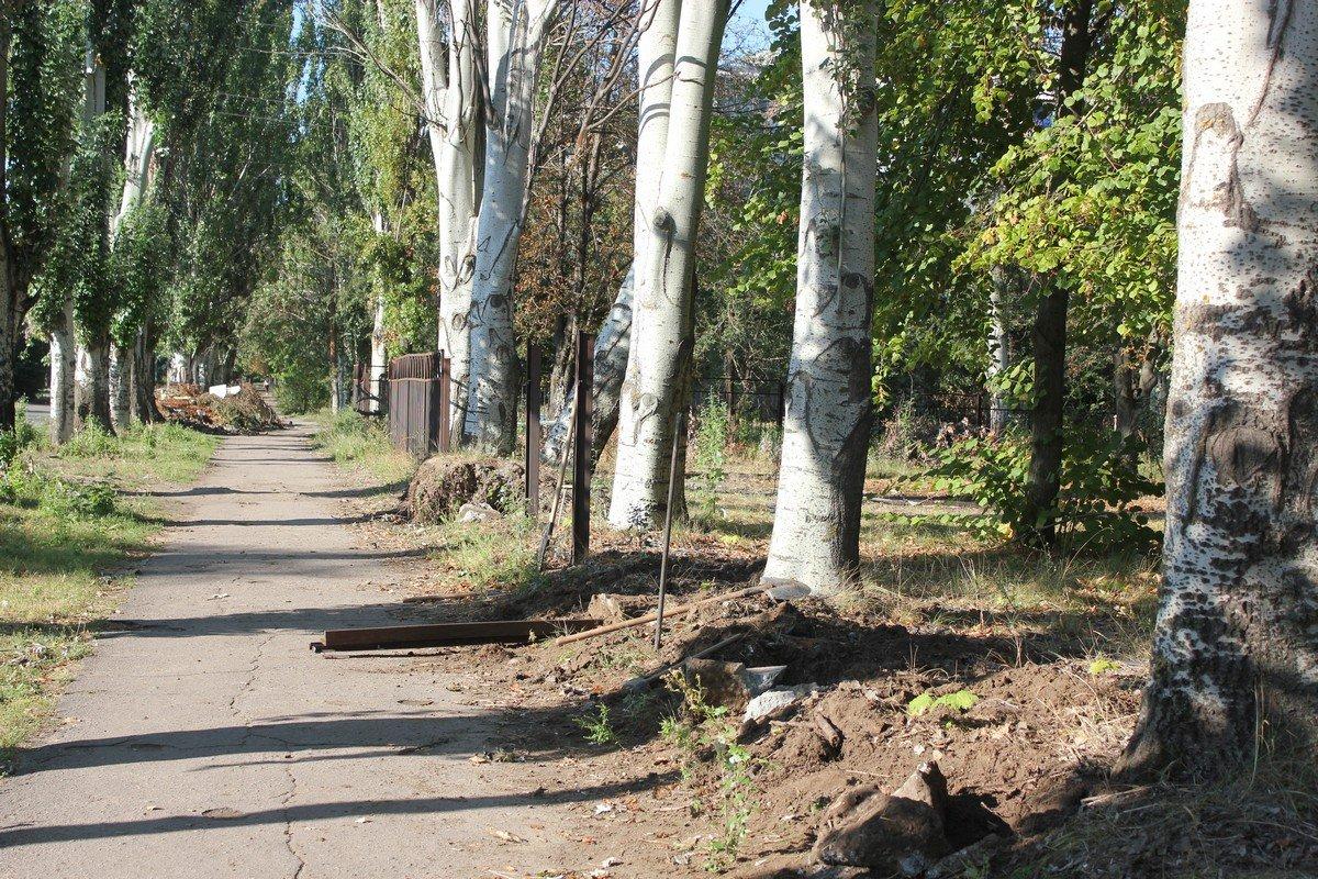Упавшие деревья принадлежат городу