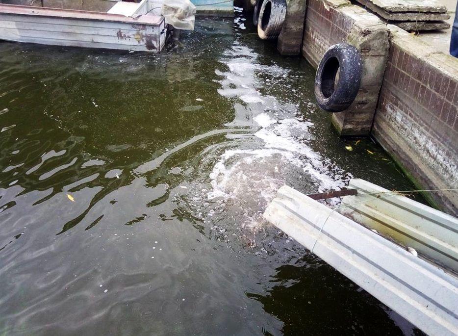 Запасы акватории пополнили за членские взносы