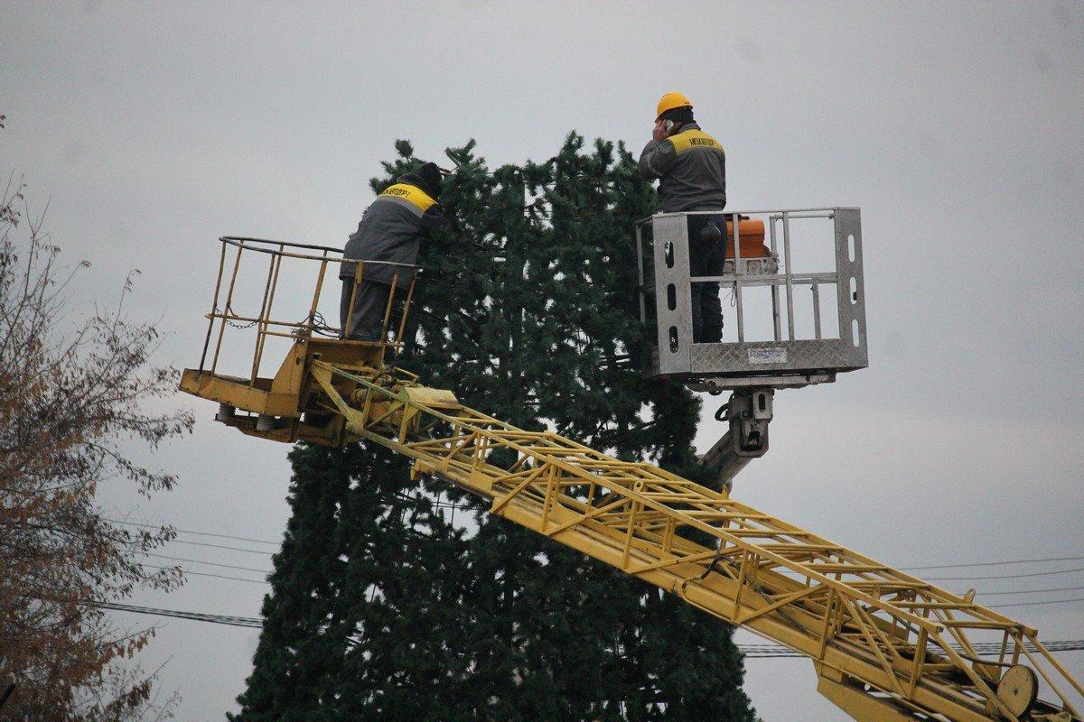 Открытие елки состоится 19 декабря в 16:00