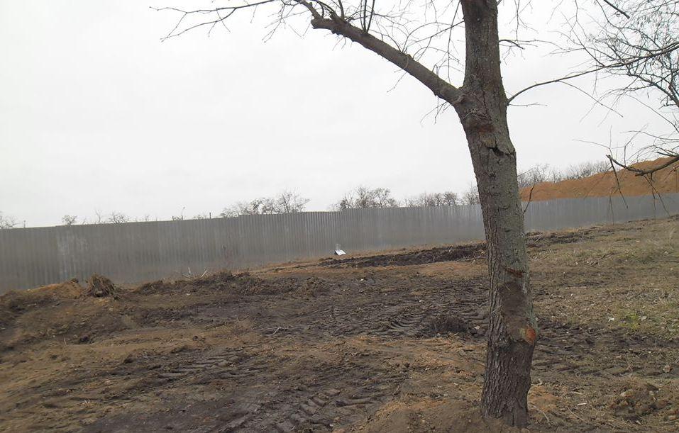 В парке Победы стало меньше деревьев