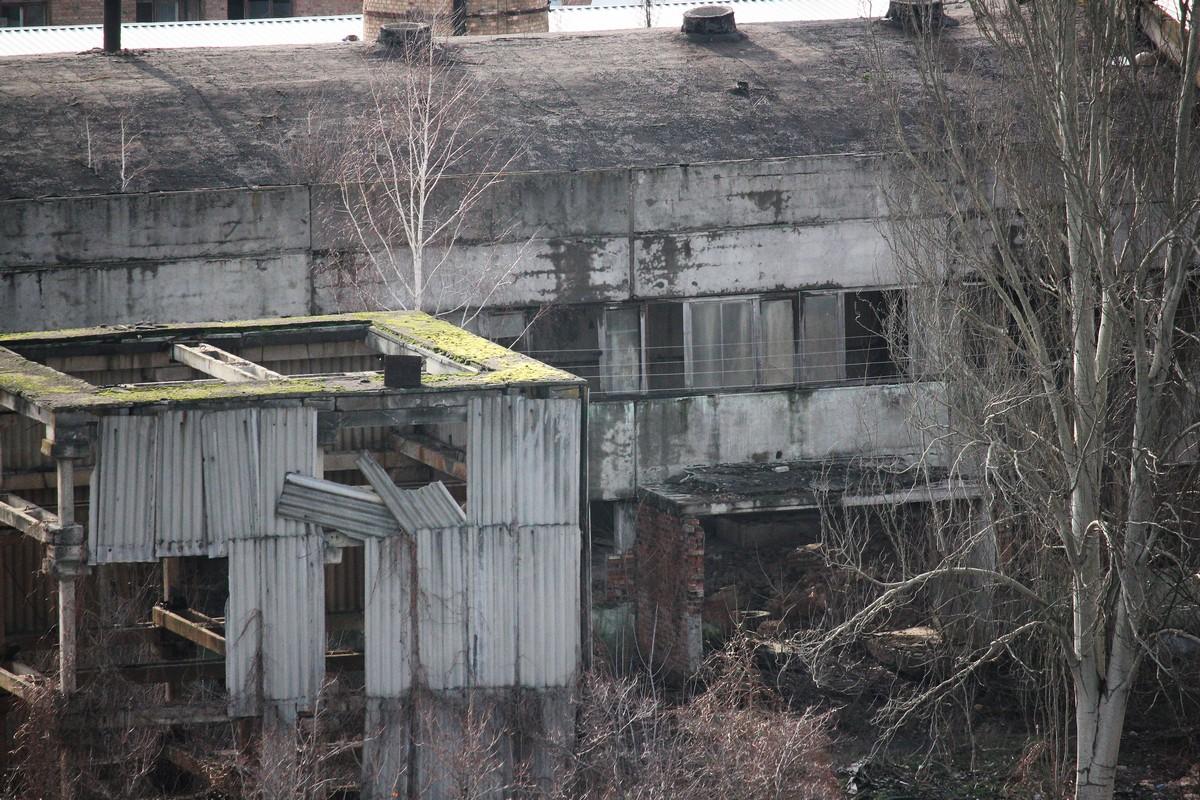 Полное запустение, бездомные, стаи бродячих собак и кучи мусора